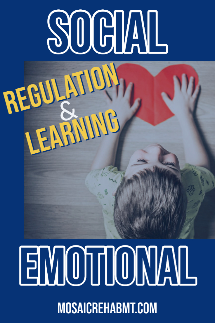 Social Emotional Regulation and Learning